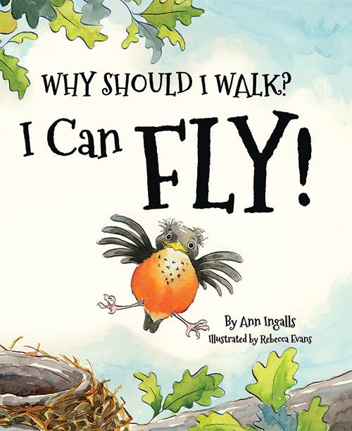 What Should I Walk? I Can Fly!